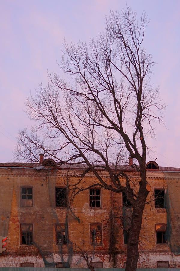 与残破的窗口的空的被毁坏的大厦 桃红色天空日落 在红色的照片 破坏压迫大气  免版税库存照片