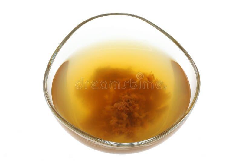 与母亲酵素的苹果汁醋 免版税库存图片