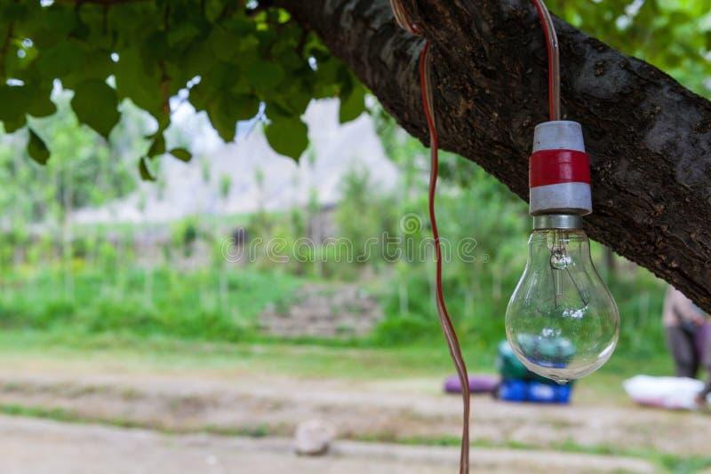 与水下落的一个老时尚钨电灯泡在底部 免版税库存图片