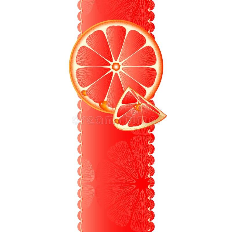与水多的片式的横幅葡萄柚 库存例证