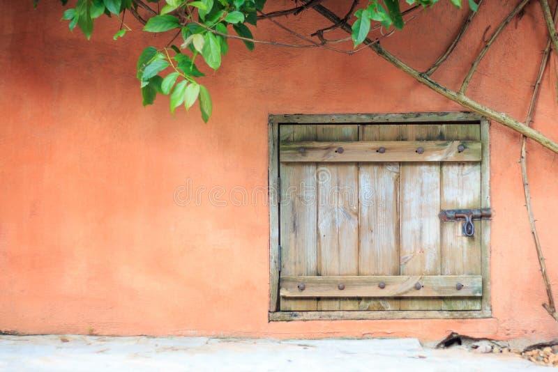 与水泥墙壁和常春藤的一个老木门 免版税库存照片