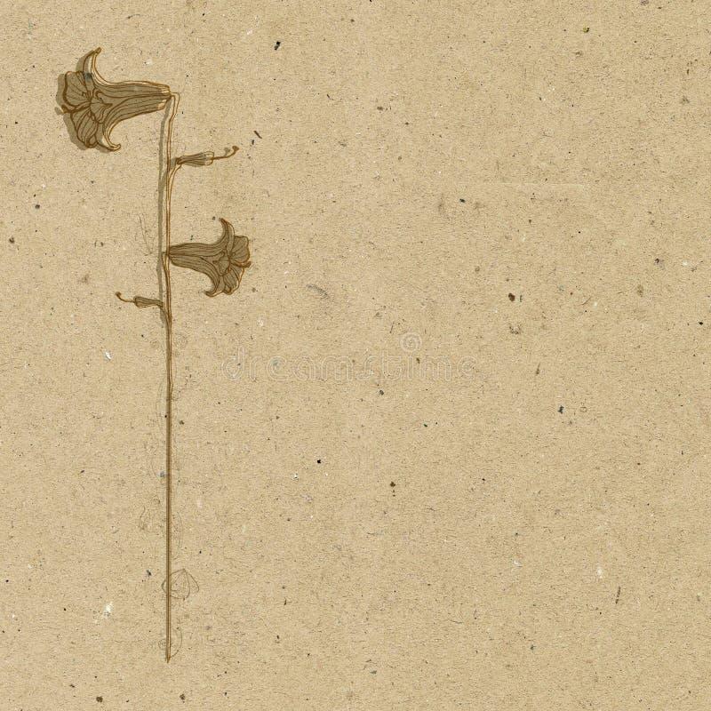 与水芋百合花的葡萄酒花卉背景 免版税库存照片