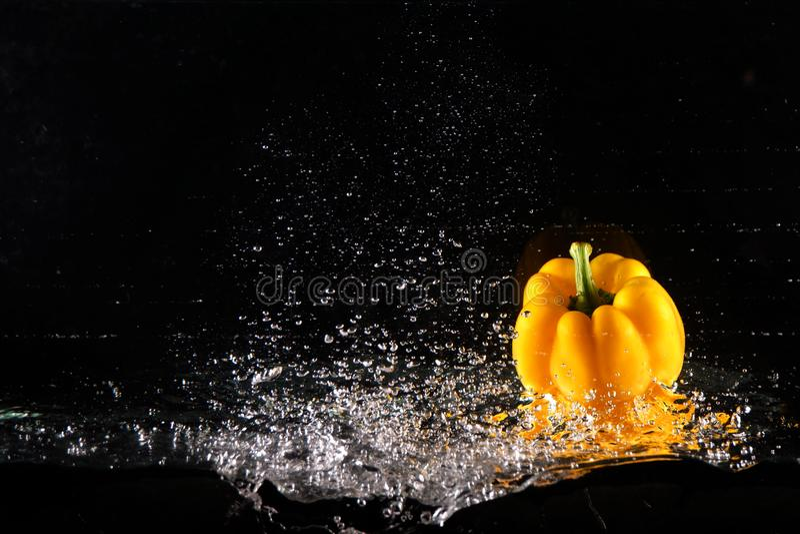 与水飞溅和泡影的新鲜的黄色喇叭花胡椒 复制空间 水多的黄色辣椒粉被投下入在黑色的水 免版税库存照片