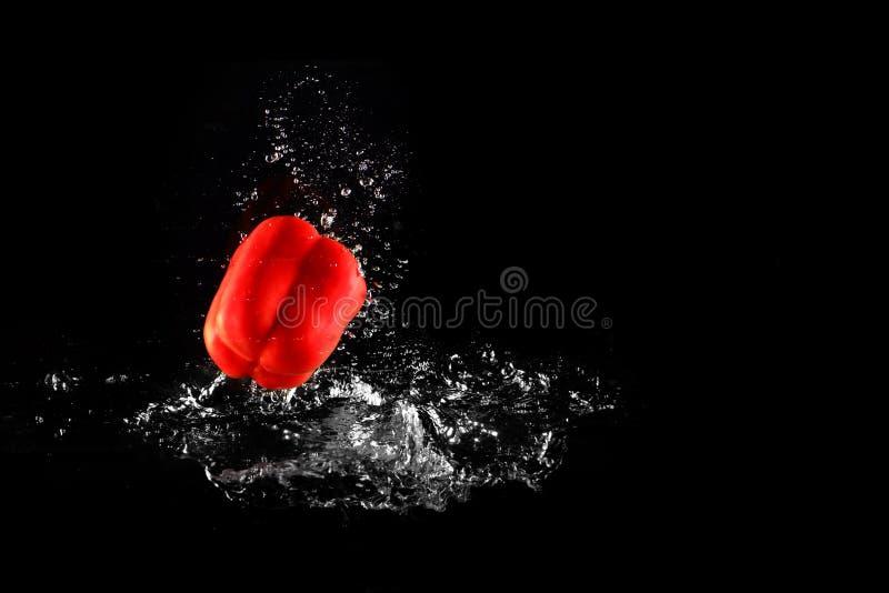 与水飞溅的新鲜的红色被隔绝的甜椒和泡影 胡椒拷贝空间 水多的红色辣椒粉下降了落入水  库存图片