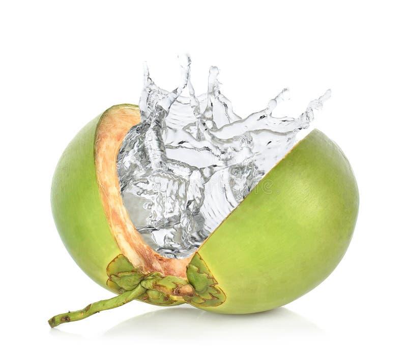 与水飞溅的绿色椰子在白色背景 免版税库存照片