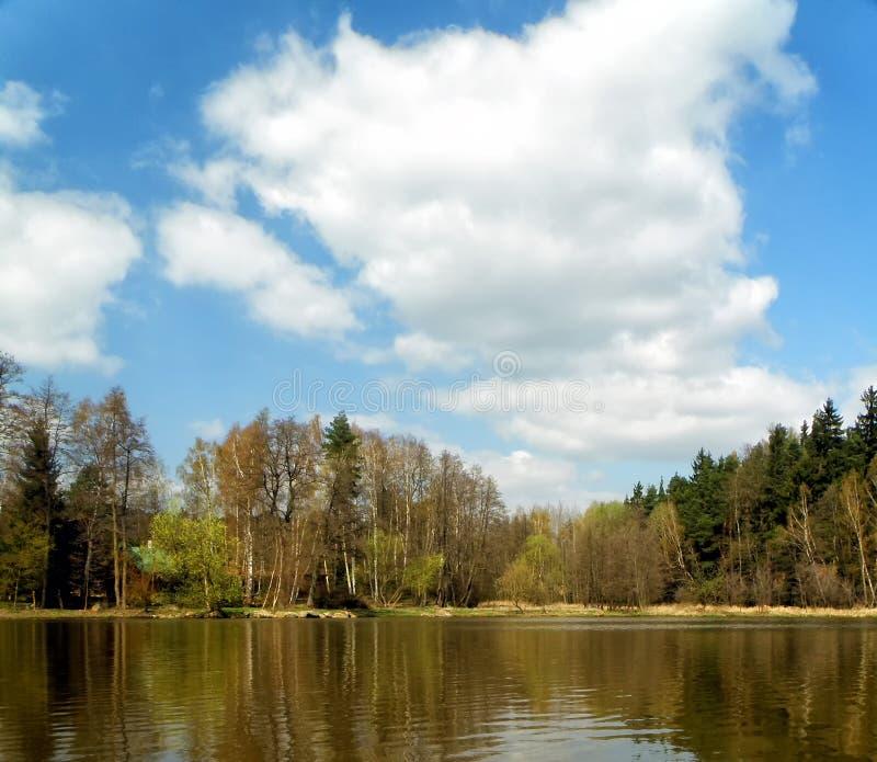 与池塘的横向 库存图片