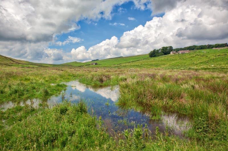 与池塘的诺森伯兰角风景 免版税库存照片