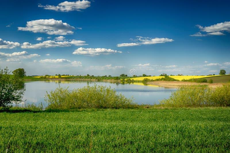 与池塘,绵延山的农业风景 图库摄影