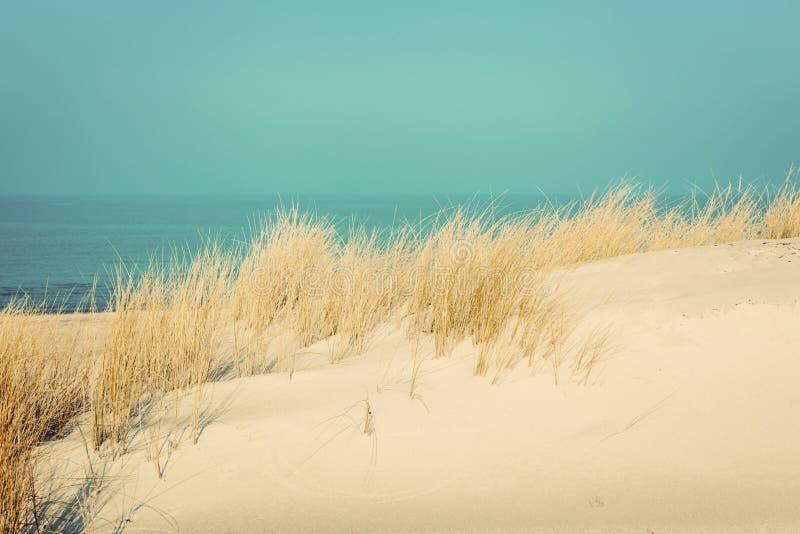 与沙丘和草的镇静晴朗的海滩 在海运somethere塔林附近的波儿地克的爱沙尼亚 免版税库存图片
