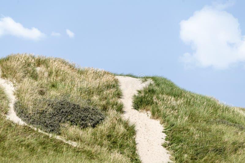 与沙丘的丹麦海岸风景 库存图片