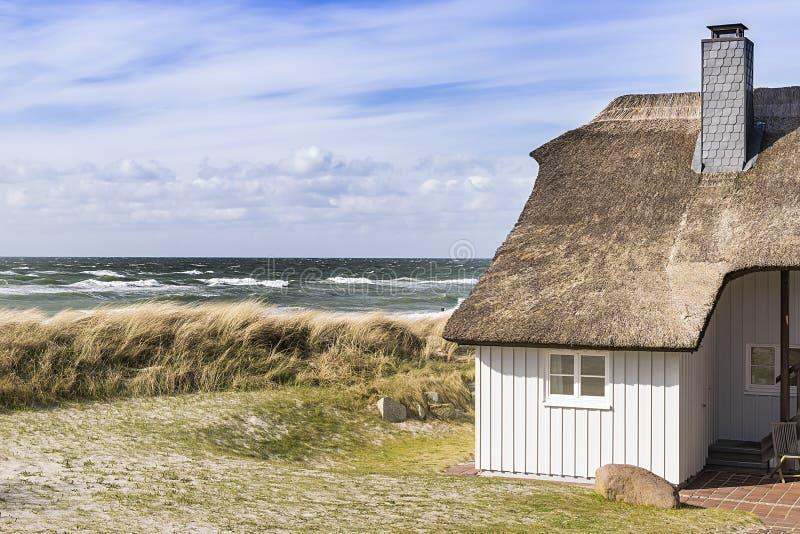 与沙丘草和房子的海岸波罗的海 库存照片