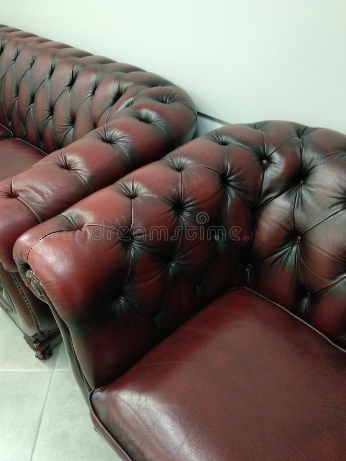 与沙发、扶手椅子和绿色植物的办公室内部 库存图片