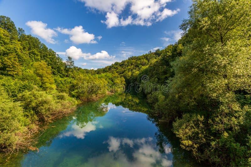 与河、森林和反射的美好的风景 图库摄影