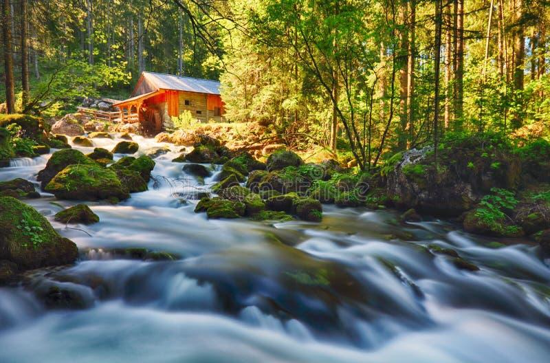 与河和森林的秀丽风景在奥地利, Golling 免版税库存照片