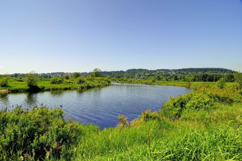 与河和草甸的春天风景 免版税库存图片