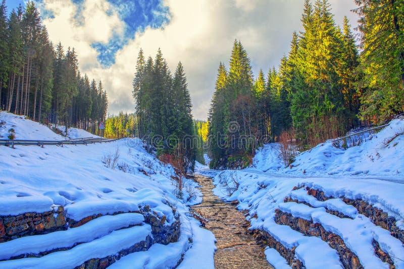 与河的冬天风景 库存图片