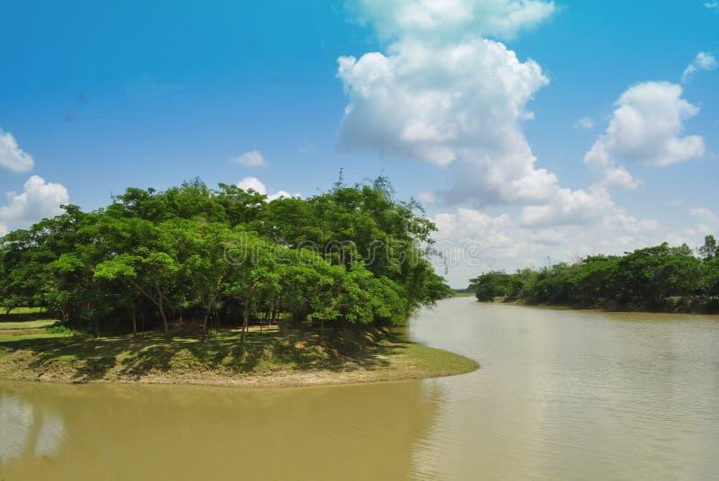 与河的美好的夏天风景 免版税库存图片