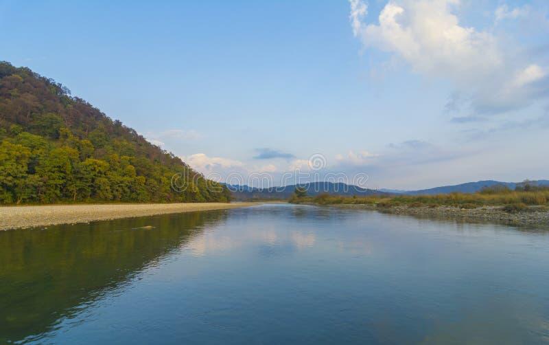 与河舒展的森林风景 库存图片