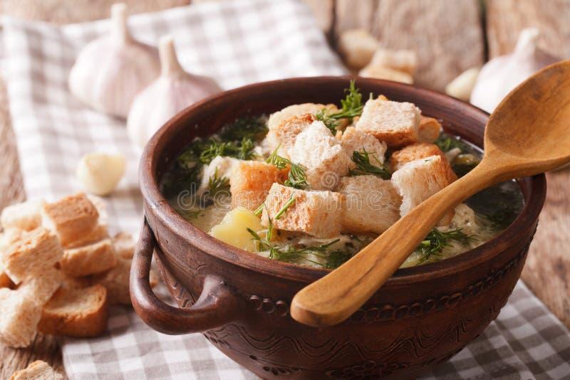 与油煎方型小面包片特写镜头的浓大蒜汤在碗 水平 库存照片