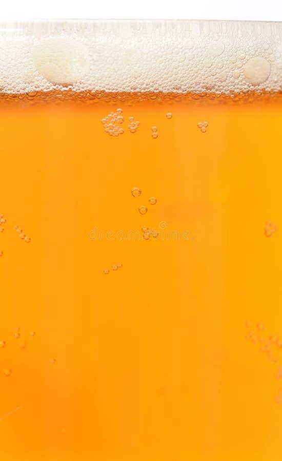 与泡沫的啤酒 库存照片
