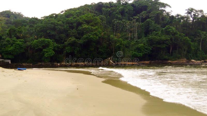 与波浪和金黄光的海滩 库存照片