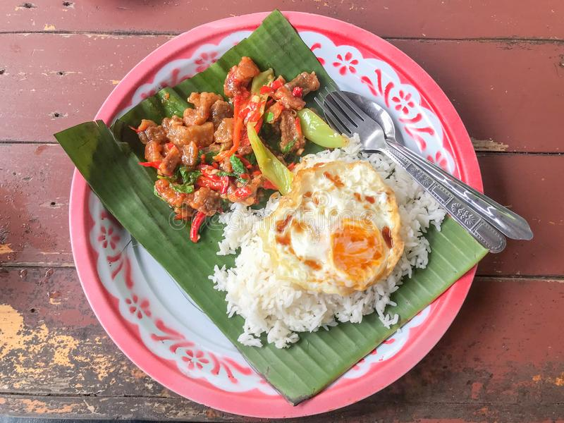 与泰国蓬蒿的油煎的辣酥脆猪肉 免版税库存照片