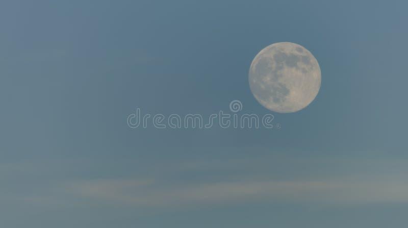 与浅兰的天空的天月亮 免版税库存照片
