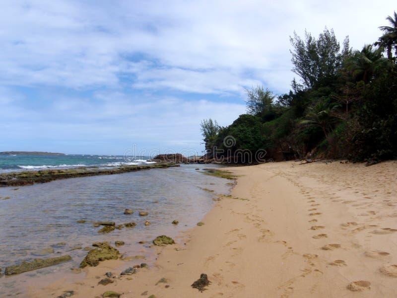 与浪潮水池和脚印刷品的海滩 图库摄影
