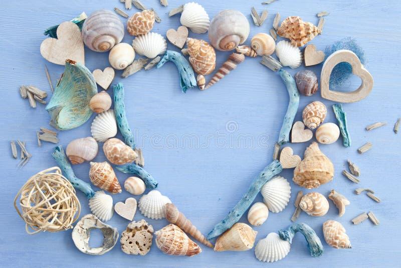 与海壳的木背景 库存图片