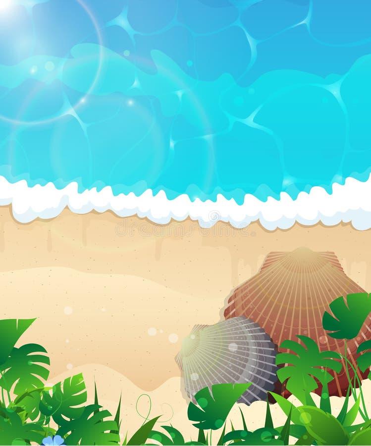 与海扇壳的海洋海滩 库存例证