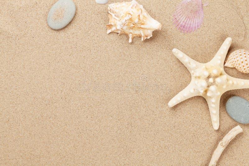 与海星和壳的海沙 图库摄影
