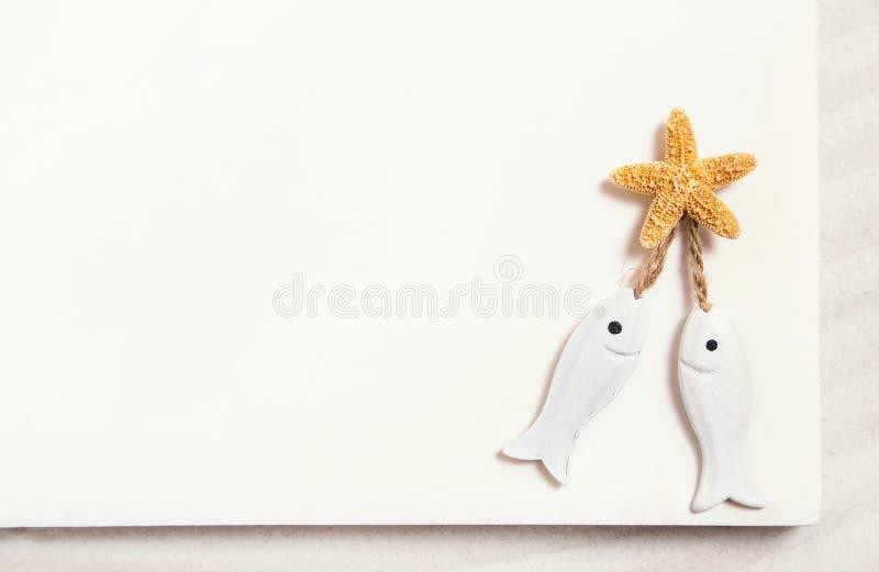 与海星的两条白色鱼在白色夏天背景为 图库摄影