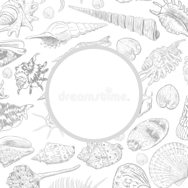 与海的独特的博物馆收藏的夏天概念轰击罕见的濒于灭绝的物种,在白色背景的软体动物灰色等高 cir 向量例证