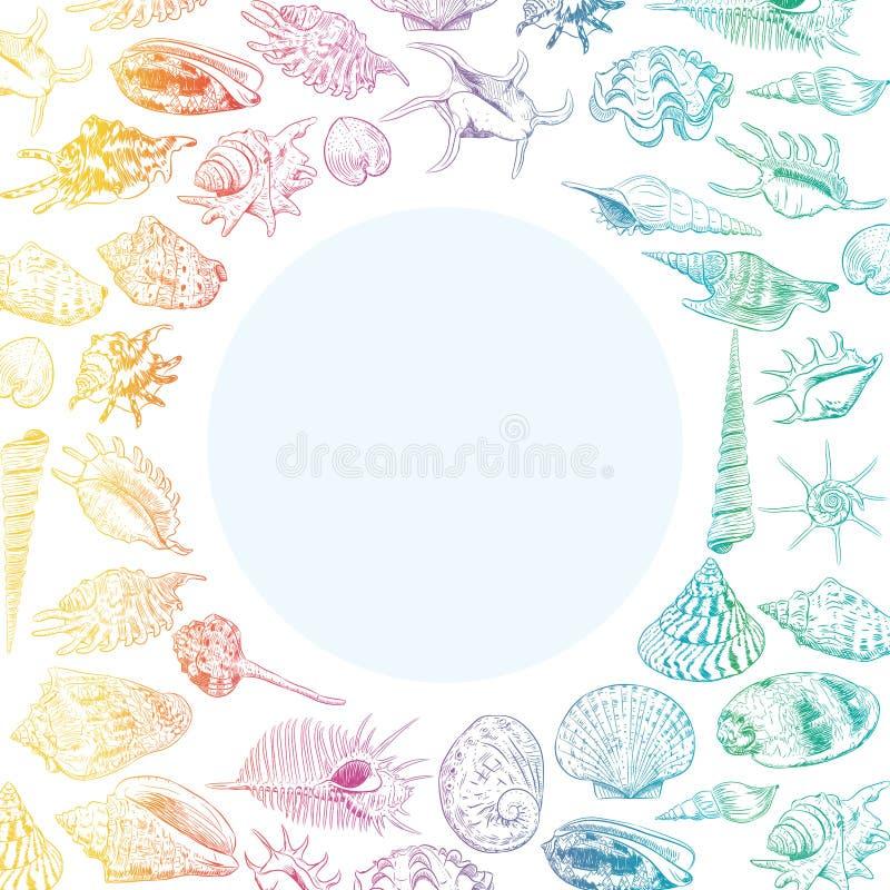 与海的独特的博物馆收藏的夏天概念轰击罕见的濒于灭绝的物种,软体动物在白色背景的彩虹等高 库存例证