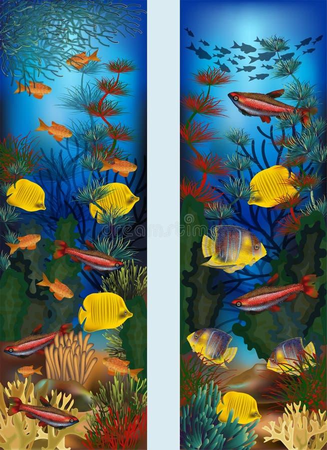 与海藻和热带鱼,传染媒介的水下的垂直的横幅 皇族释放例证
