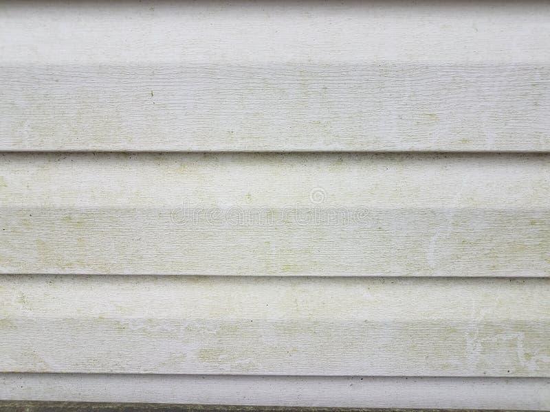与海藻的肮脏或污浊的白色家庭房屋板壁 免版税库存图片