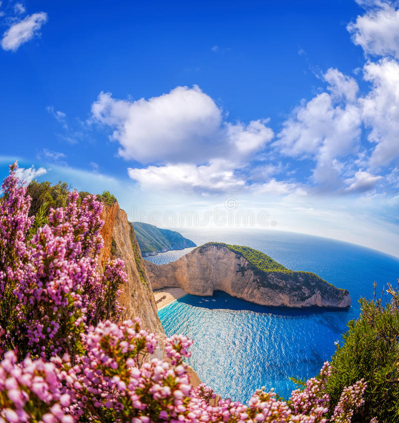 与海难和花的Navagio海滩反对在扎金索斯州海岛,希腊上的蓝天 库存图片