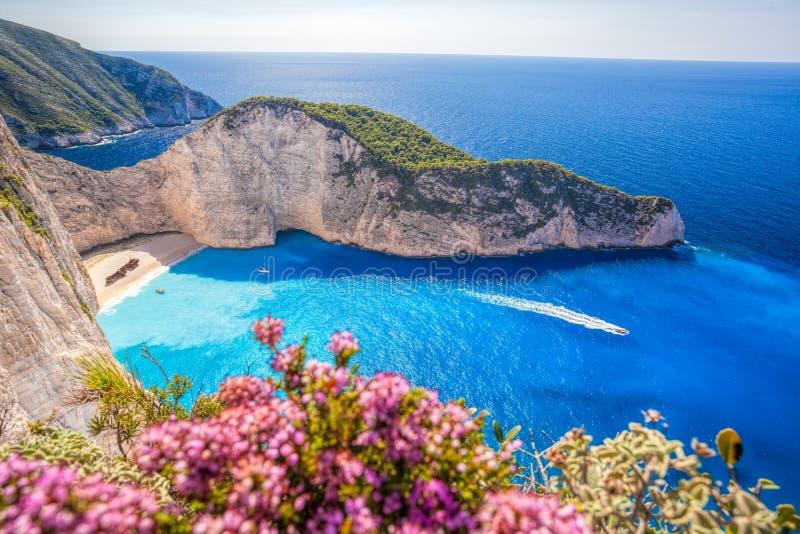 与海难和花的Navagio海滩在扎金索斯州海岛上在希腊 免版税库存照片