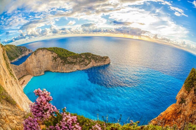 与海难和花的Navagio海滩在扎金索斯州海岛上在希腊 库存图片