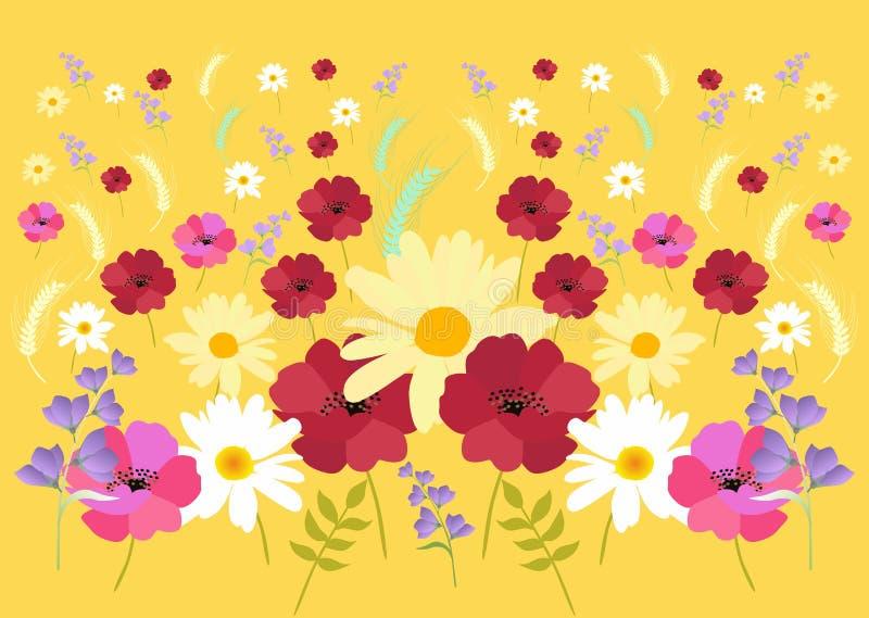 与淡紫色吊钟花,红色和桃红色鸦片、春黄菊和麦子耳朵的美好的样式在yeloow 不尽的传染媒介背景 向量例证
