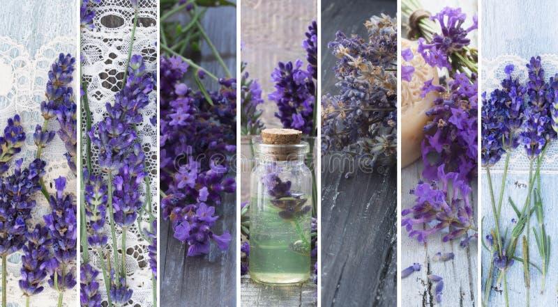 与淡紫色花的自然,新鲜的化妆用品 免版税库存照片