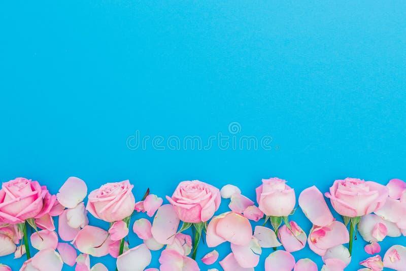 与淡色玫瑰芽和瓣的花卉框架在蓝色背景 平的位置,顶视图 桃红色玫瑰花纹理 红色上升了 免版税库存照片
