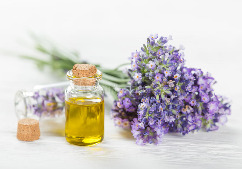 与淡紫色花的健康治疗 库存照片