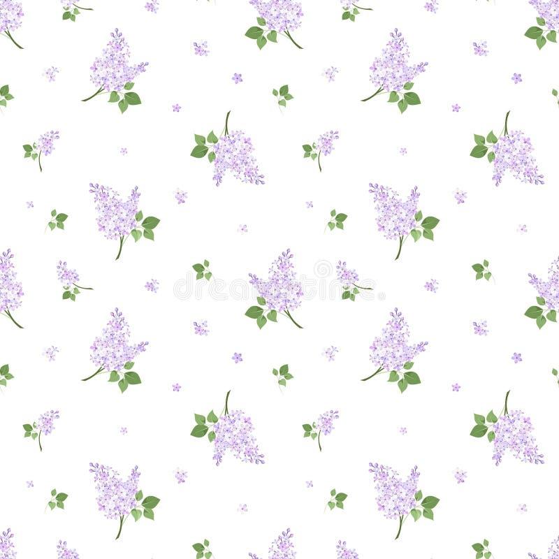 与淡紫色花的无缝的样式。传染媒介illust 向量例证