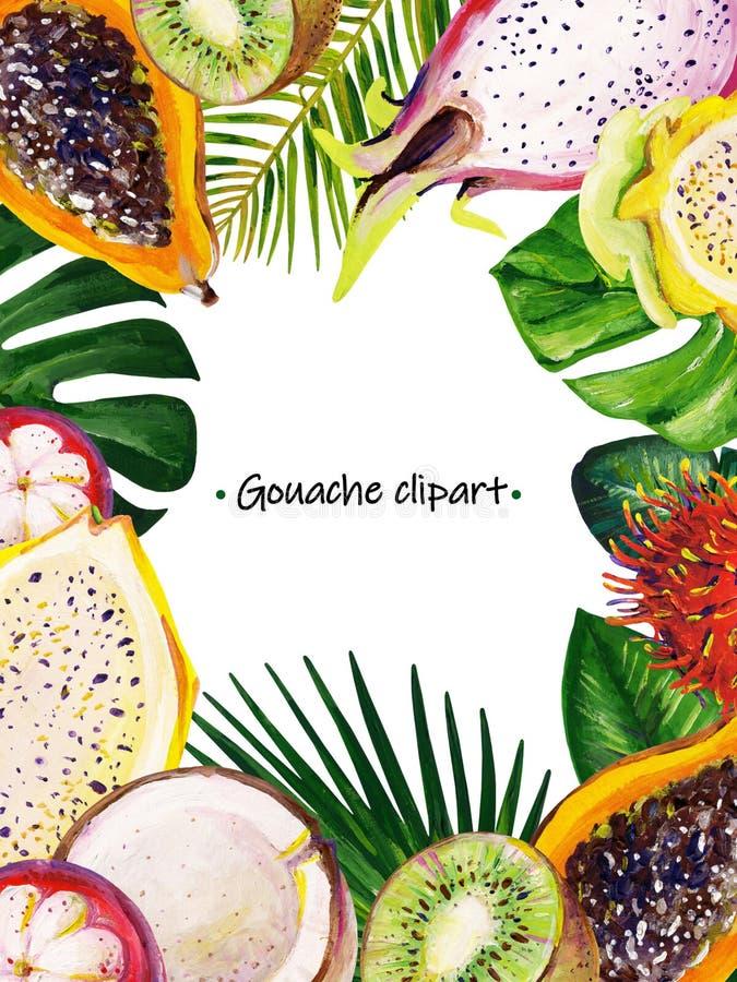 与混杂的热带叶子和果子的树胶水彩画颜料夏天长方形框架 免版税库存图片
