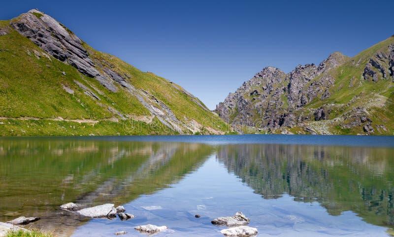 与清楚的山湖的田园诗夏天风景在阿尔卑斯 免版税库存图片