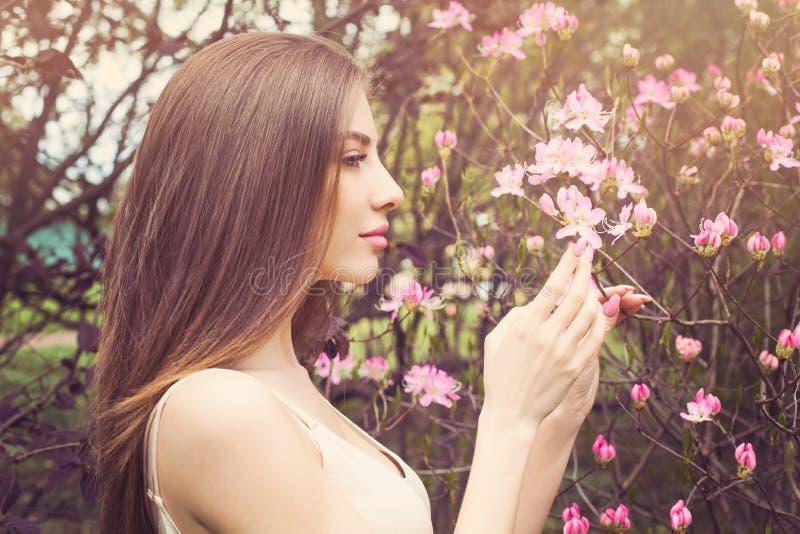 与清楚的皮肤,外形的美女面孔 健康女孩嗅花 库存图片