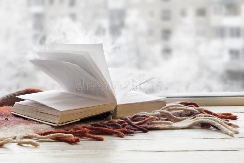 与温暖的格子花呢披肩的被打开的书在反对冬天视图的白色窗台从外面 库存照片