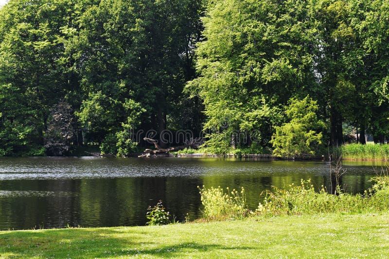 与湖、绿草和树的美好的风景在公园 库存图片