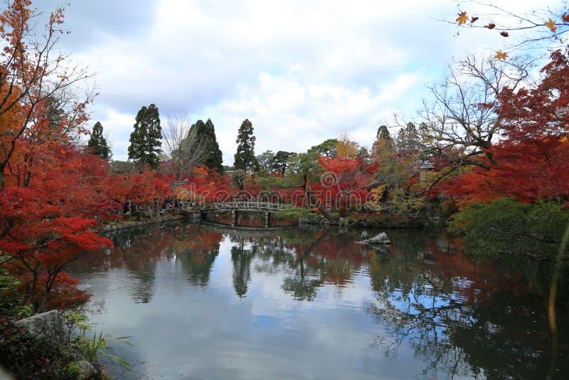 与湖和树的秋天风景 库存照片